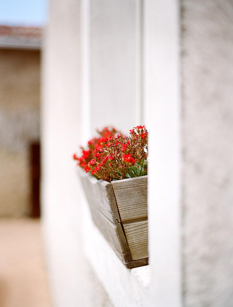 Flores_rojas_en_balcón
